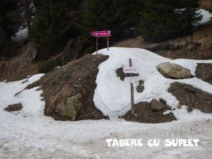 TabereCuSuflet.049